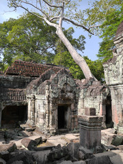Preah Khan Temple entrace, trees, stones, Angkor, Cambodia