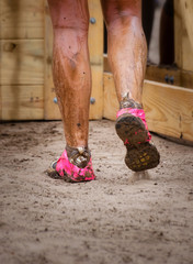 Mud race runner's muddy feet