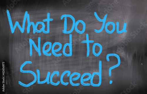 What Do You Need To Succeed Concept Poster