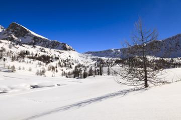 Isola 2000: Alpes-Maritimes dans le sud de la France