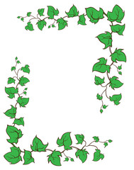 Ivy vector hand drawn frame