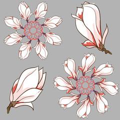 Vector hand drawn magnolia flowers round vignette