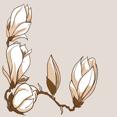 Vector hand drawn magnolia flowers frame
