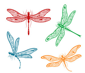 Pretty dainty dragonfly designs