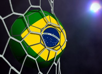 Brazil Ball in Goal Net