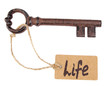 Key to life, Conceptual photo. Isolated on white