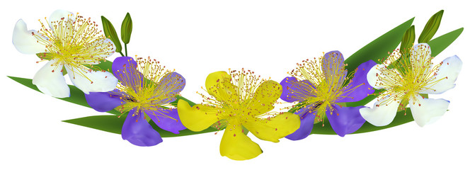 three color spring flowers band