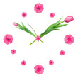 Clock made of pink tulips isolated on white