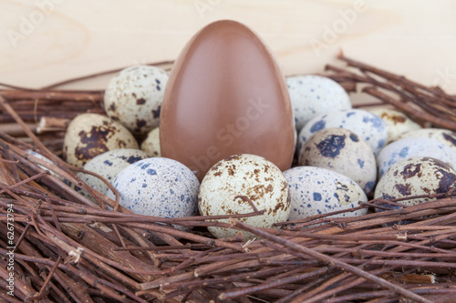 Small quail eggs and big chocolate egg in nest