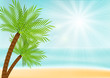 Summer vacation background with palm trees