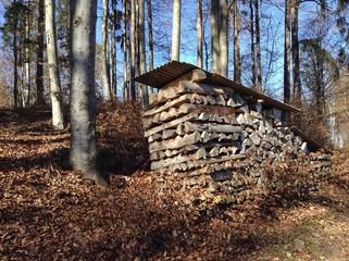 Lagern von Holz im Wald