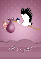 stork with baby girl for newborn