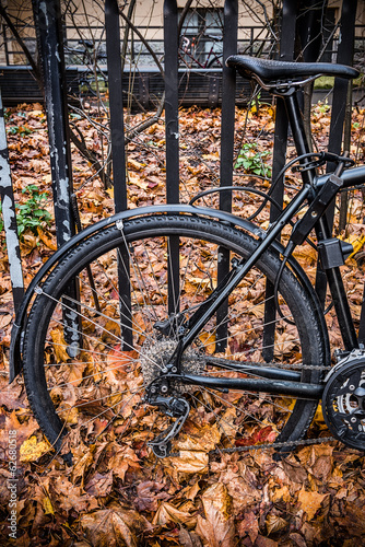 Bicycle and autumn leaves