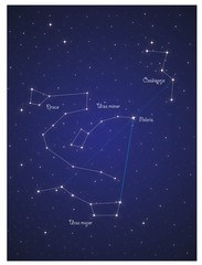 Constellations Ursa major , Ursa minor , Draco and Cassiopeja