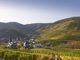 Deutschland, Rheinland-Pfalz, Ansicht des Weindorf mit Weinbergen im Ahrtal