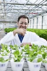 Deutschland, München, Wissenschaftler im Gewächshaus mit Feldsalat Pflanzen