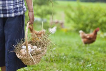 Deutschland, Bayern, Junge mit Korb mit Eiern und Huhn auf dem Bauernhof