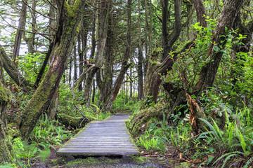 Kanada, British Columbia, Vancouver Island, Botanical Beach Park