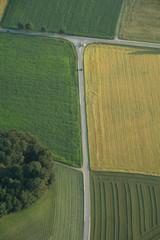 Deutschland, Bayern, Blick auf Maisfeldern