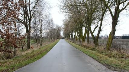 Asphalt road in the landscape