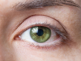 Closeup of female natural green eye without makeup