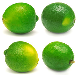 Collection of lime