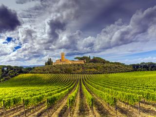 vineyards in the Chianti region of Tuscany, Italy