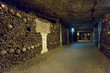 The Catacombs of Paris - 62702538