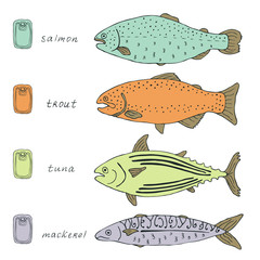 fish colorful collection