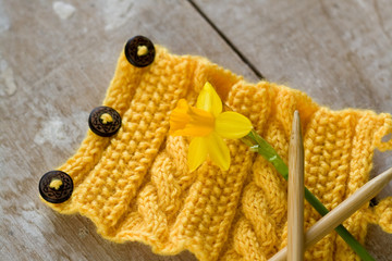 Knitting pattern on a wooden background and narcissus