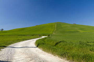 blu sky and green in Umbra, Toscana
