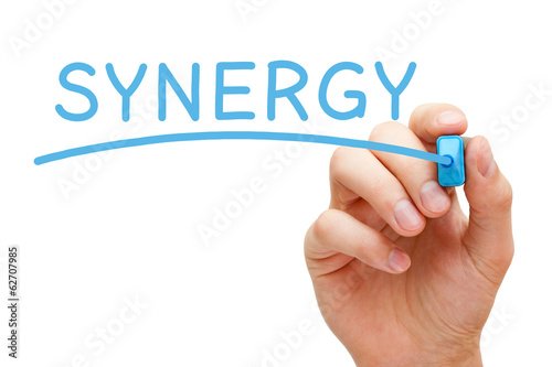 Synergy Blue Marker