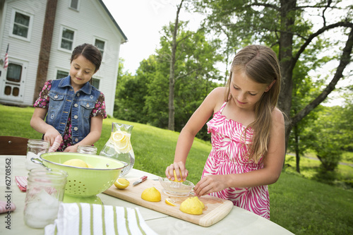 A Summer Family Gathering At A Farm. Two Girls Working Together, Making Homemade Lemonade.