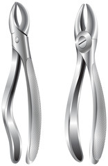 Stainless dental pliers