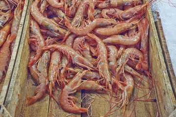 fresh shrimps for sale at the central market