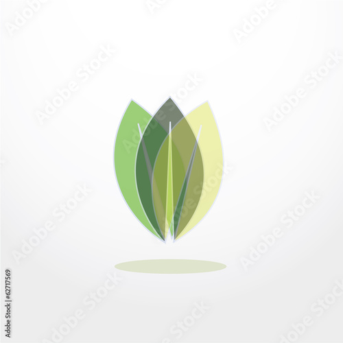 leaves icon vector