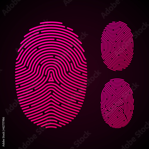 Types of fingerprint patterns