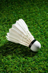 Badminton on the grass