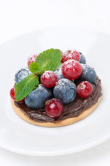 mini cake with chocolate cream and berries, close-up