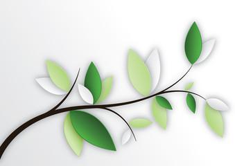 feuilles sur branche