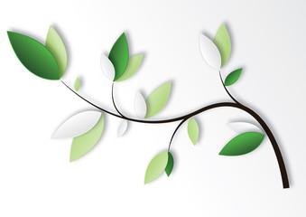 feuilles branche
