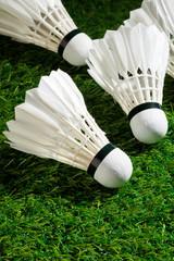 Badminton on the grass