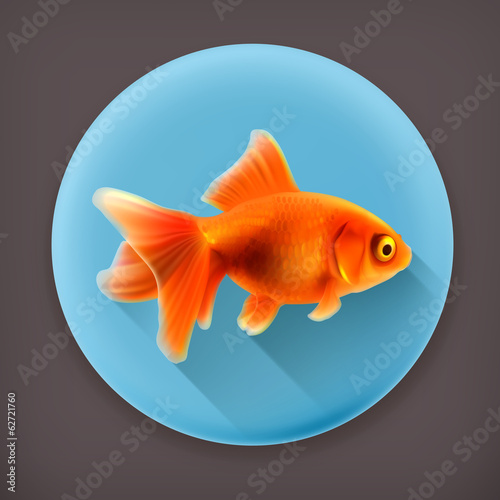 Goldfish, long shadow vector icon