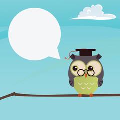 owl  teaching on a brunch