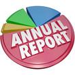 Annual Report Pie Chart Graph Big Revenue Profit Market Share