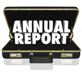 Annual Report Briefcase Words Financial Statement Filing