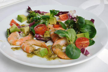 Salad of watercress salad with shrimp and avocado