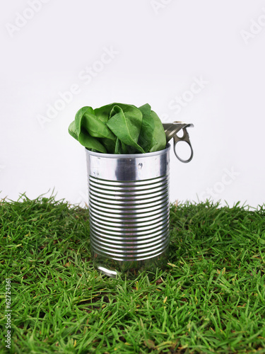 Tin with spinach
