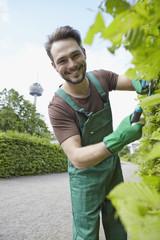 Deutschland, Köln, junger Mann schneiden Blätter