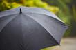 Heavy rain - 62728570